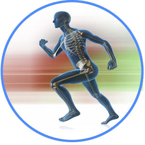 Kinesiology for Android