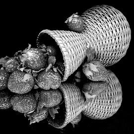 Still life  by Asif Bora - Black & White Objects & Still Life