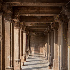 Mosque Shadows by Dave Hall - Buildings & Architecture Places of Worship ( mosque, india, architecture, travel, light, shadows )