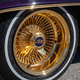 Gold Rims by Kathy Suttles - Artistic Objects Other Objects