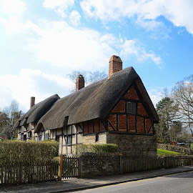 thatch cottage by Kathleen Devai - Buildings & Architecture Homes ( roof, sky, cottage, trees, shakesphere, tatch )