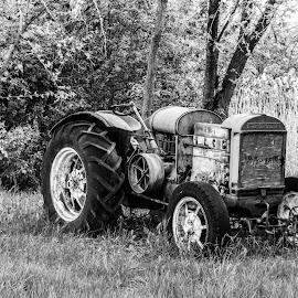 Long forgotten by Jesi Smith - Transportation Automobiles