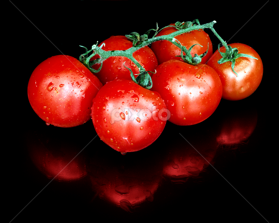 Fruit of the vine by Peter Greenhalgh - Food & Drink Fruits & Vegetables ( black background, on vine, fruit, red, tomato, food, solanum lycopersicum, ripe, stalk, vegetable, tomatoes )