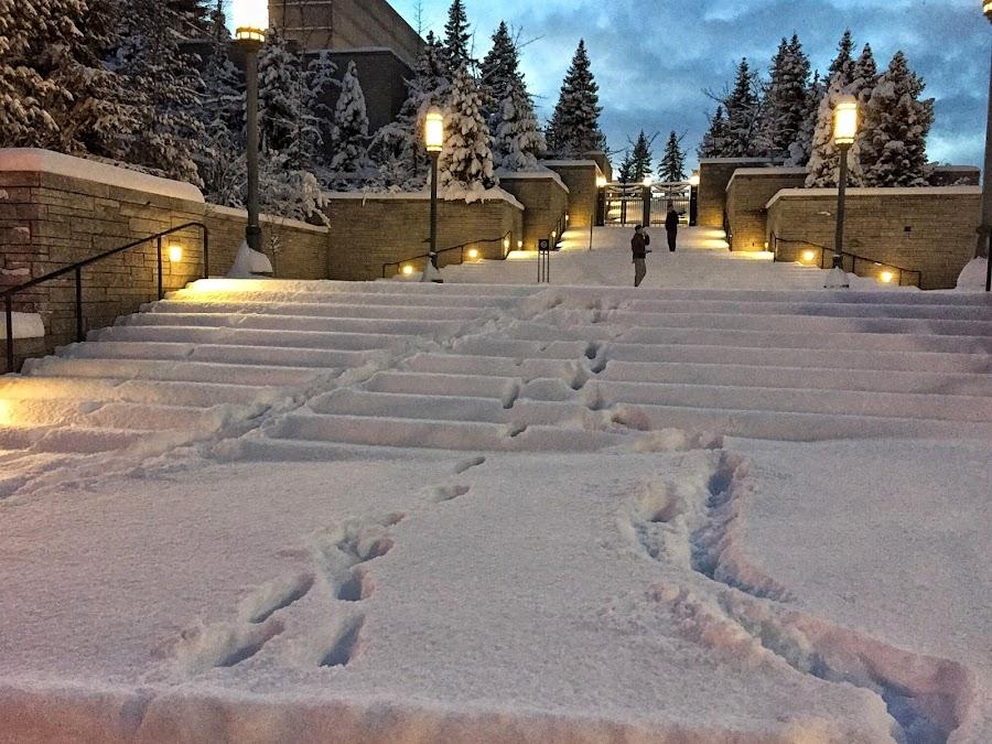 First steps by Jeannie Matteson - City,  Street & Park  Street Scenes ( two, winter, utah, blue hour, snow, salt lake city )
