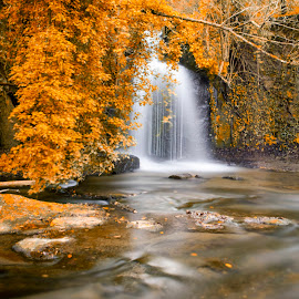 waterfall paradise by Alex supertramp Bukowski - Landscapes Waterscapes ( water, orange, waterscape, waterfall, forest, paradise, landscape, photo, photography, lefotodialex, silky, effect, color, d750, autumn, foliage, long exposure, nikon )