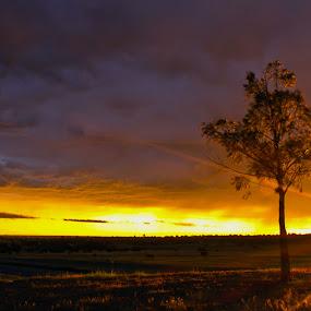 Burst... by Dave Ross - Landscapes Sunsets & Sunrises