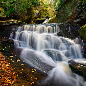 Elakala Falls #2 by Dan Girard - Landscapes Waterscapes ( water, smooth, flowing, 2015, dan girard photography, landscape, wv, dan-girard-photography, dan_girard_photography, mountains, season, silky, nature, fall, falls, elakala falls, rocks )