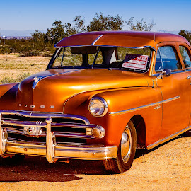 1950 Dodge by Dave Lipchen - Transportation Automobiles ( 1950 dodge )