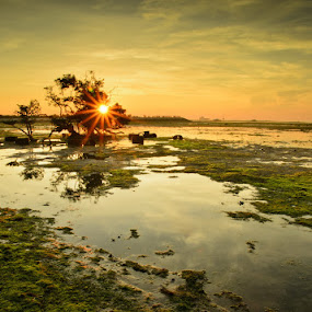 Beautiful Sunrise  by Ade Yuda - Landscapes Waterscapes