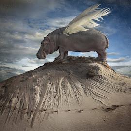 Hippofly by Dariusz Klimczak - Digital Art Abstract ( fantasy, story, klimczak, square, surreal, kwadrart )