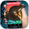 Download Mouse on Screen - funny joke APK to PC