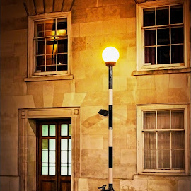 Pole Position by Craig McNiven - Transportation Bicycles ( bike, pole, lamp, night, bicycle,  )
