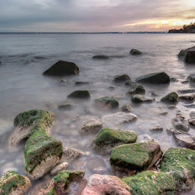 Paletta Beach by Elvis Dorencec - Landscapes Beaches ( shore with rocks, hdr, paletta, beach )
