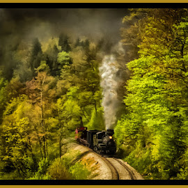 Mountain Pass by James Eickman - Transportation Trains