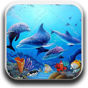 Download Free Dolphin Wallpapers for Windows Phone