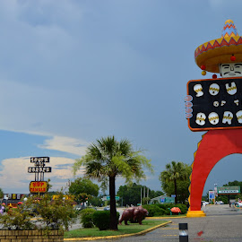 South of the Border by Thomas Shaw - City,  Street & Park  Street Scenes ( signs, parking lot, park, white, the, south carolina, sign, palm tree, of, tourist, sky, blue, trees, south, south of the border, border )