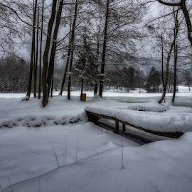 Winter Mood by Jaro Miščevič - Landscapes Travel ( winter, ice, snow, trees, lake, bridge, landscape )