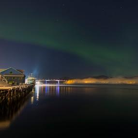 Aurora over sea by Benny Høynes - Landscapes Waterscapes ( winter, aurora borealis, bridge, coast, norway )