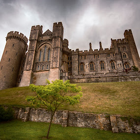 Arundel by Mike Woodford - Buildings & Architecture Public & Historical ( safe, defence, fortress, sanctuary, stone, castle )