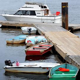 Dinghy by Tammy Belanger - Transportation Boats ( water, moored, sea, ocean, boat, dinghy )