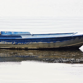 Reflections by Carolyn Lawson - Transportation Boats