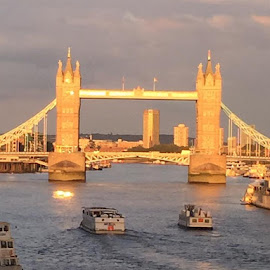 Tower bridge at sunset by Donna Calamito- Gingerelli - Novices Only Landscapes