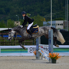Perfect jump by Andrea Macherelli Bianchini - Sports & Fitness Other Sports ( girl, horse, horse racing, race, jump )
