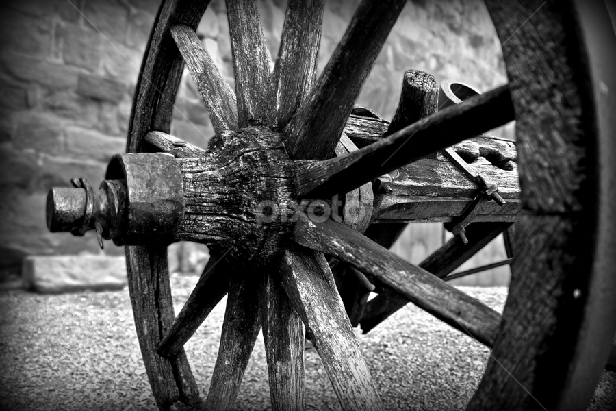 old cannon by Thomas Stroebel - Artistic Objects Antiques ( wooden, wheel, black and white, bw, black and white collection, landscape mode, antique, historic, cannon )