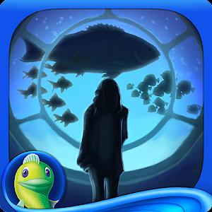 Big fish dating app