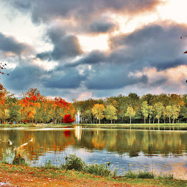 Early Autumn on Waterworks Pond by Carolyn Taylor - Landscapes Waterscapes