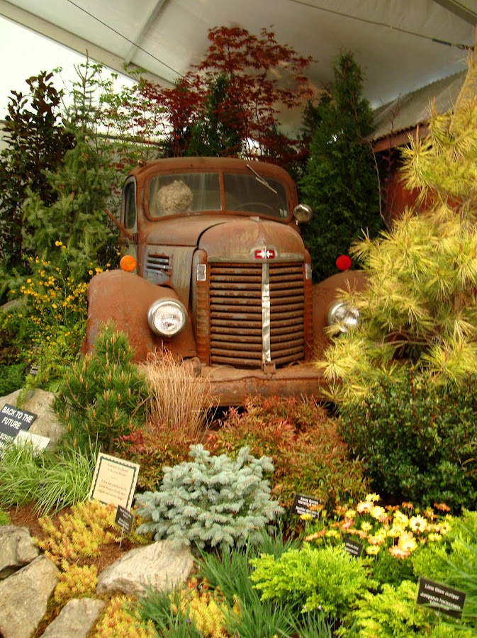 Old Myrtle by Michiale Schneider - Artistic Objects Still Life ( car, vintage, auto, rusty, flowers,  )