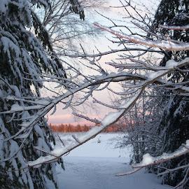 Trails End by Dede Sawyer Bailey - Landscapes Mountains & Hills ( winter, mountain, sunset, adirondacks, landscape )