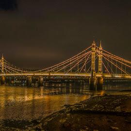 Prince Albert Bridge,London by Yordan Mihov - Buildings & Architecture Bridges & Suspended Structures ( london, thames, riverbank, river, water, prince albert bridge )