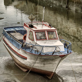 The old boat by Ana Paula Filipe - Transportation Boats ( water, old, one, boat, river )
