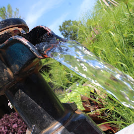Water Pump by Eryn Shepherd - Novices Only Objects & Still Life ( water, novice, flowing, pump, garden )