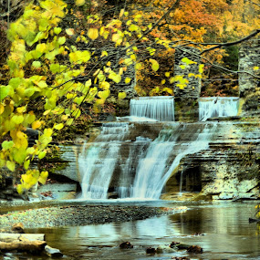 Waterfalls at Stony Brook by Jim Davis - Landscapes Waterscapes ( water, waterfalls, reds, yellows, fall colors, raging water, oranges, natures colors )