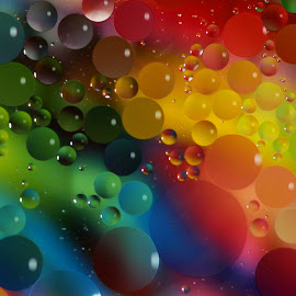 Rainbow Oil Drops by Janet Herman - Abstract Macro ( water, abstract, oil and water, macro, colorful, colors, ellipses, drops, oil drop, rainbow, oil )