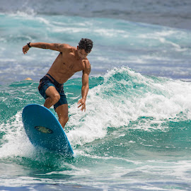 by Kelley Hurwitz Ahr - Sports & Fitness Surfing ( surfing, surfers, hawaii )