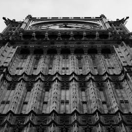 I see all by Hari Ayyar - Buildings & Architecture Statues & Monuments ( building, monochrome, london, black and white, statues, monument, big ben,  )