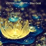 Theme - Blue Gold Icon
