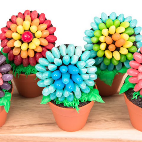 Jelly Bean Flower Pot Cupcakes