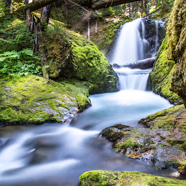 Unnamed Waterfall by Mats Nordgren - Landscapes Waterscapes ( unnamed waterfall, green, creek, waterfall, moss )