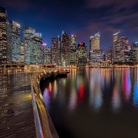 Modern Singapore by Gordon Koh - City,  Street & Park  Night ( reflection, skyline, building, blue hour, cityscape, singapore, marina bay, nightscape, city, lights, skyscraper, night, pond )