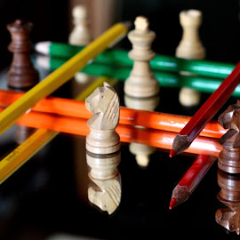 Chessmen barricaded  by Pradeep Kumar - Artistic Objects Other Objects