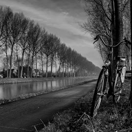 by Francois Loubser - Transportation Bicycles