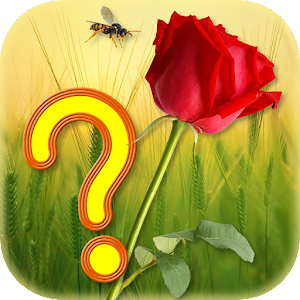 Guess the Flower APK