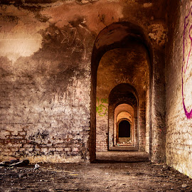 Old Fort by Mikaela Dana - Buildings & Architecture Public & Historical ( old, indoor, places, architecture, historical, fort, abandoned )