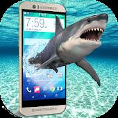 App Hungry Shark on Screen angry furious scary joke APK for Windows Phone