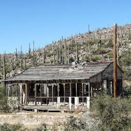 House by John Golden - Buildings & Architecture Decaying & Abandoned ( ranch, camping, biking, arizona, superstitions, travel, old 99 road )
