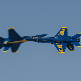 Blue Angels Solos by Ron Malec - Transportation Airplanes (  )